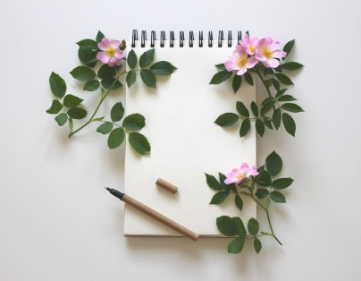 notebook-3397136_960_720.jpg